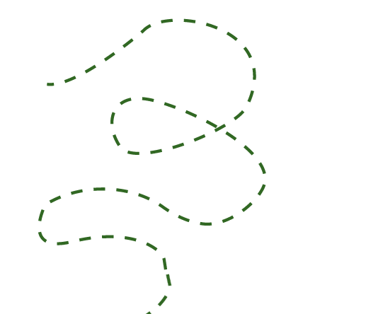 linee2